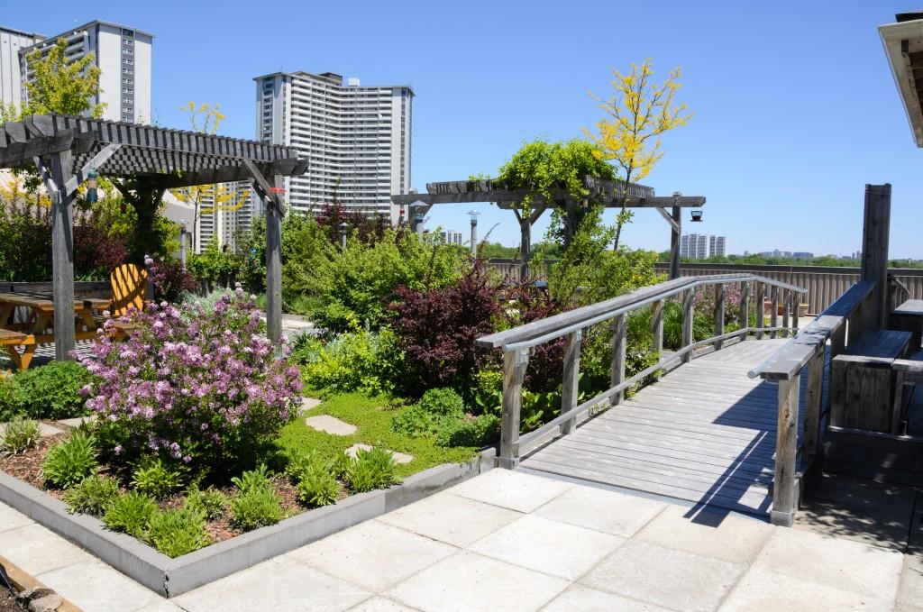 Landscaped rooftop garden
